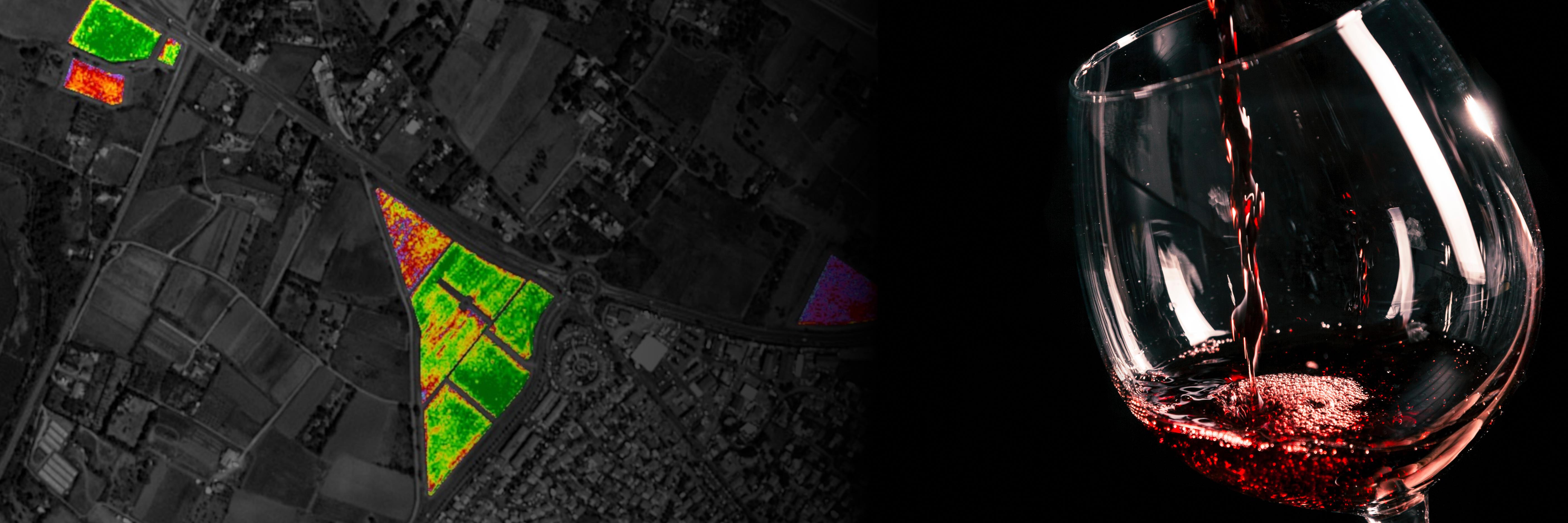 Webinaire : Comment maîtriser le potentiel qualitatif de votre vignoble grâce à l'imagerie satellitaire ?