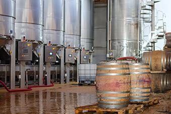 fermentation malolactique