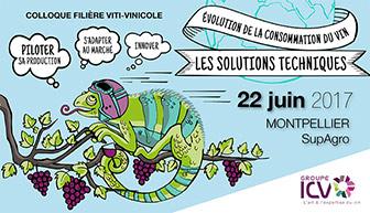 Colloque filière viti-vinicole ICV 2017