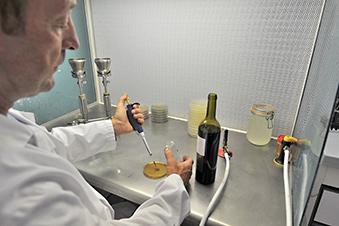 Suivi microbien des vins en élevage