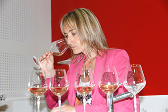 panel ICV rosés Provence