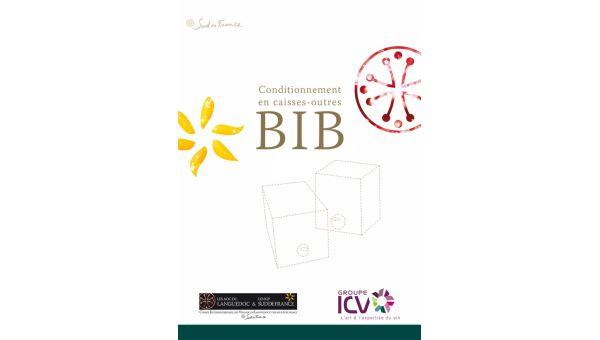 Plaquette BIB ICV