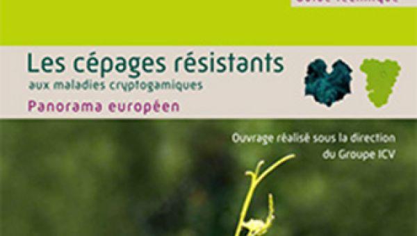 Cépages résistants en zone méditerranéenne