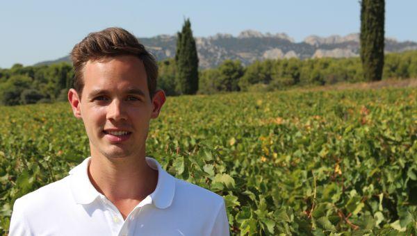 Vendanges 2019 en Vallée du Rhône sud : les années se suivent et ne se ressemblent pas !