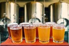 Analyses de bières