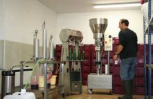 Experimental Vinification at ICV  Group
