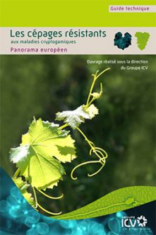 Guide to resistant grape varieties