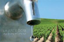 i-pilote®, outil de pilotage de l'irrigation du vignoble
