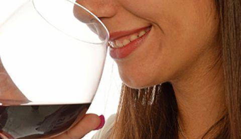 elevage des vins et contaminants