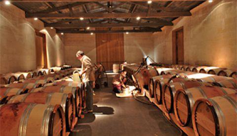 Eviter les brettanomyces pendant l'élevage de vos vins