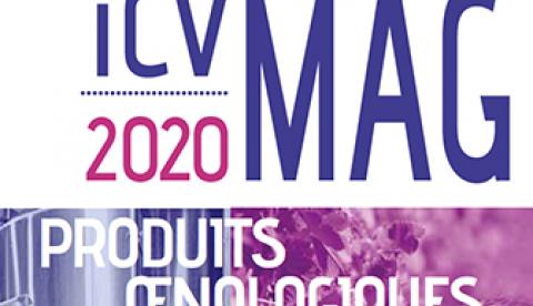 L'édition 2020 de l'ICV Mag est arrivée !