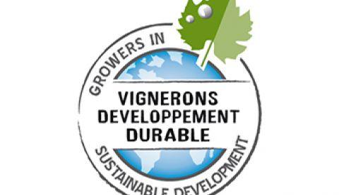 Les Vignerons en Développement Durable en Bourgogne