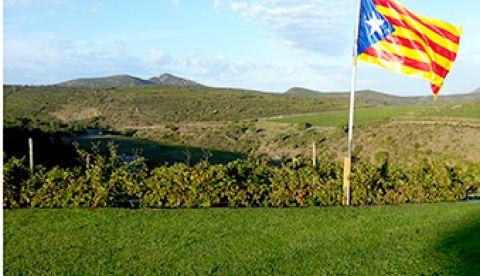 Services viticoles ICV au Celler Martin Faixo